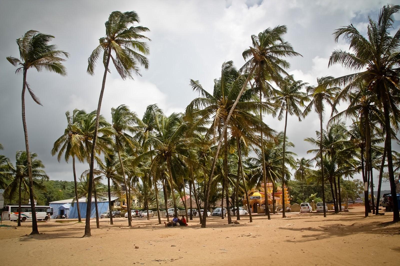 Baga Goa